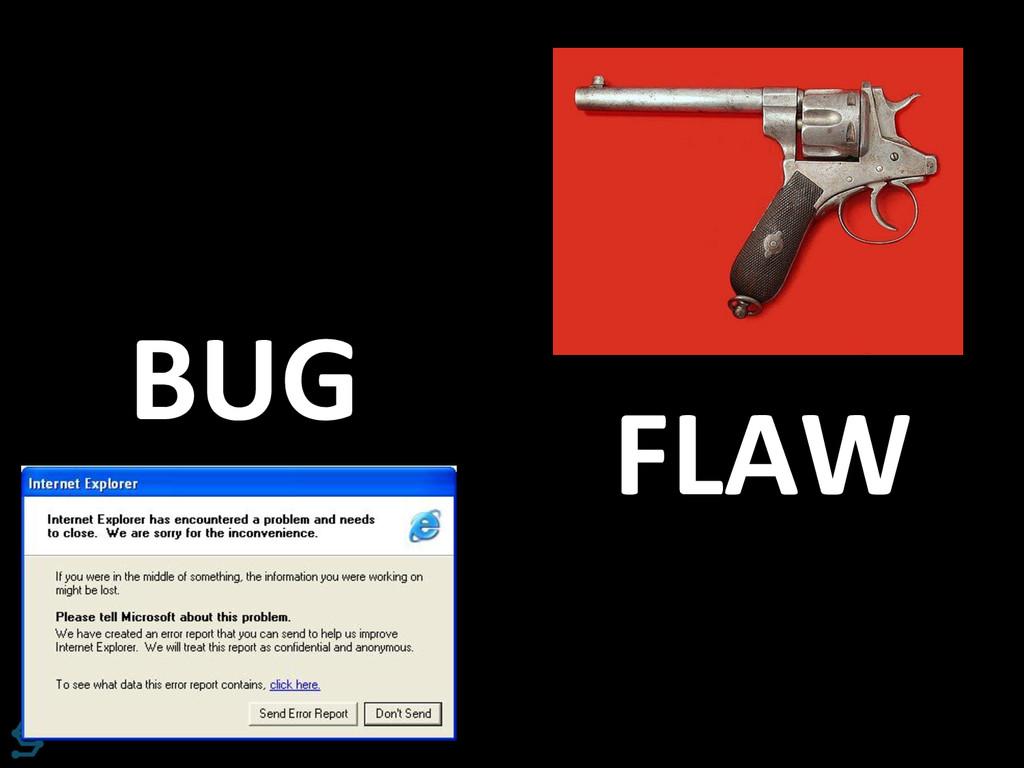FLAW  BUG