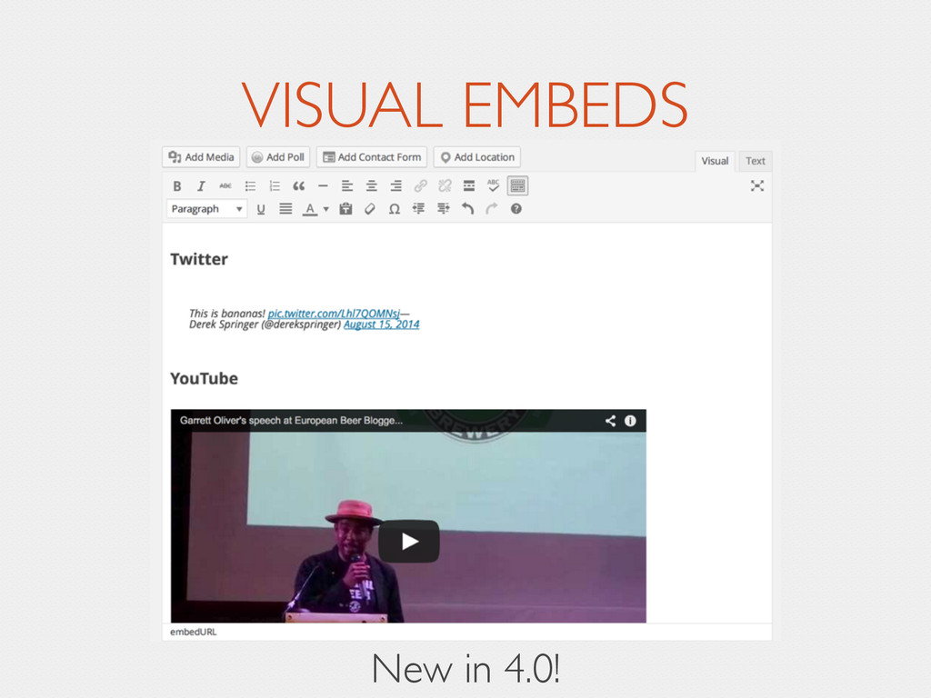 VISUAL EMBEDS New in 4.0!