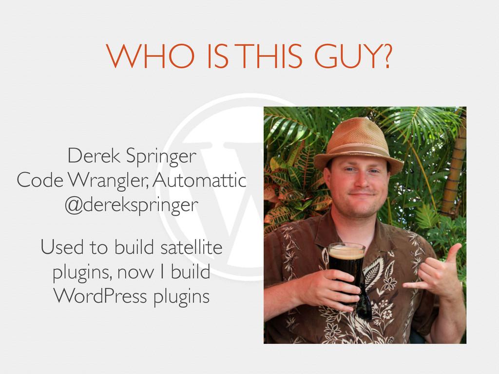WHO IS THIS GUY? Derek Springer Code Wrangler,...