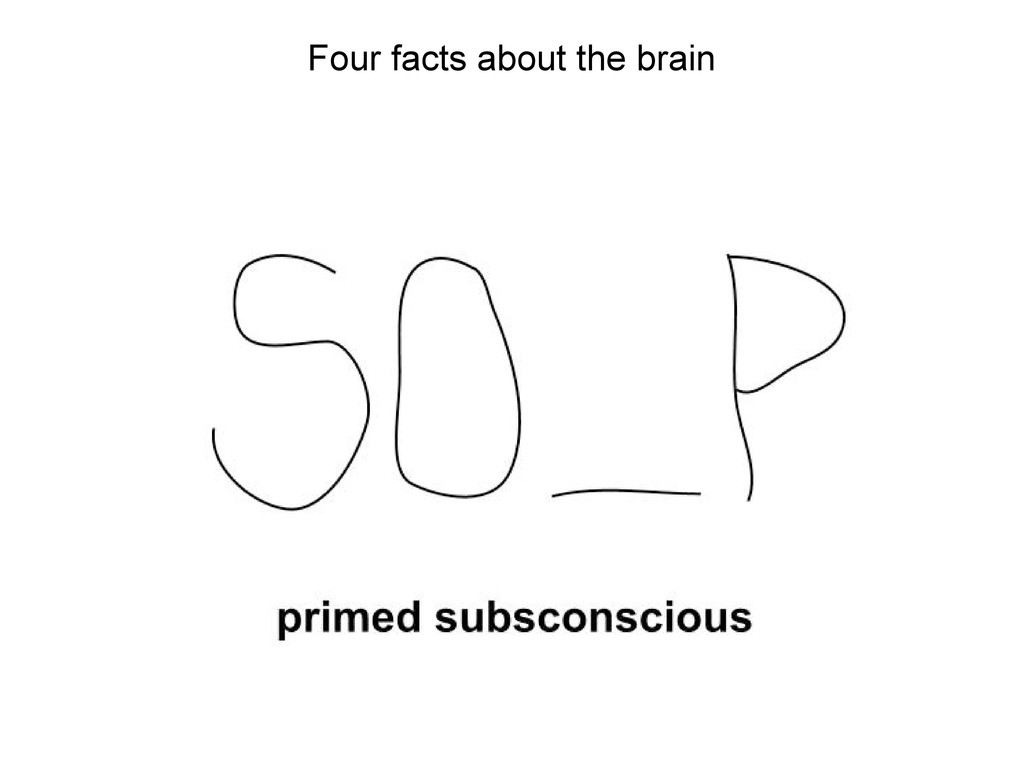 Four facts about the brain