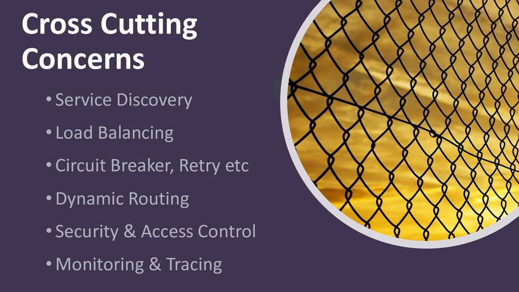 Cross Cutting Concerns • Service Discovery • Lo...