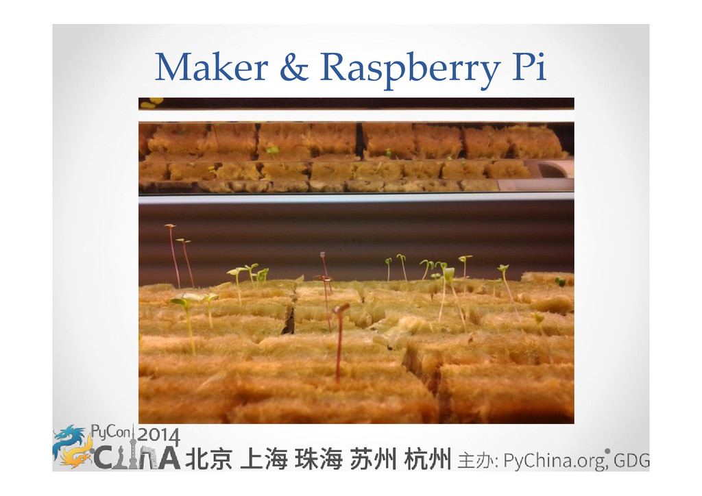 Maker & Raspberry Pi