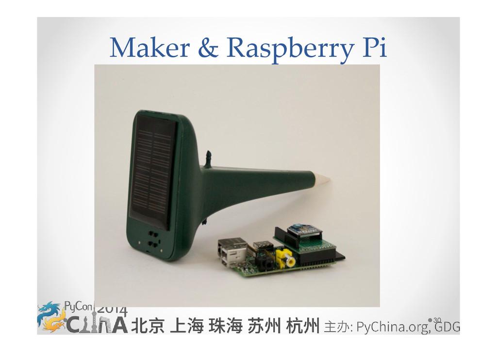 30 Maker & Raspberry Pi