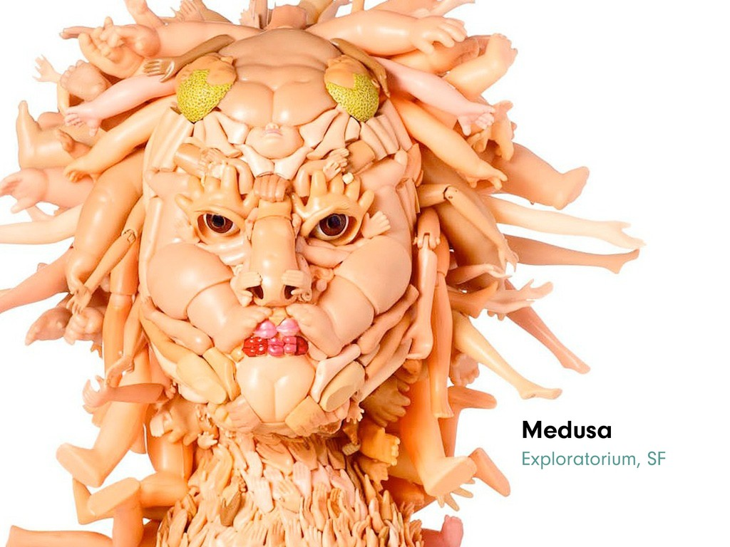 Medusa Exploratorium, SF