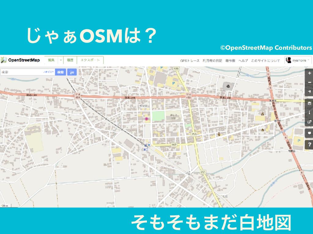 ͡Ό͊OSMʁ ͦͦ·ͩനਤ ©OpenStreetMap Contributors