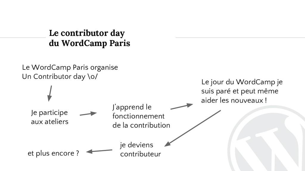 Le contributor day du WordCamp Paris Je partici...