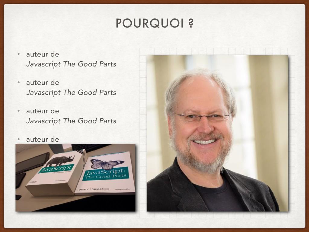 POURQUOI ? • auteur de  Javascript The Good Pa...