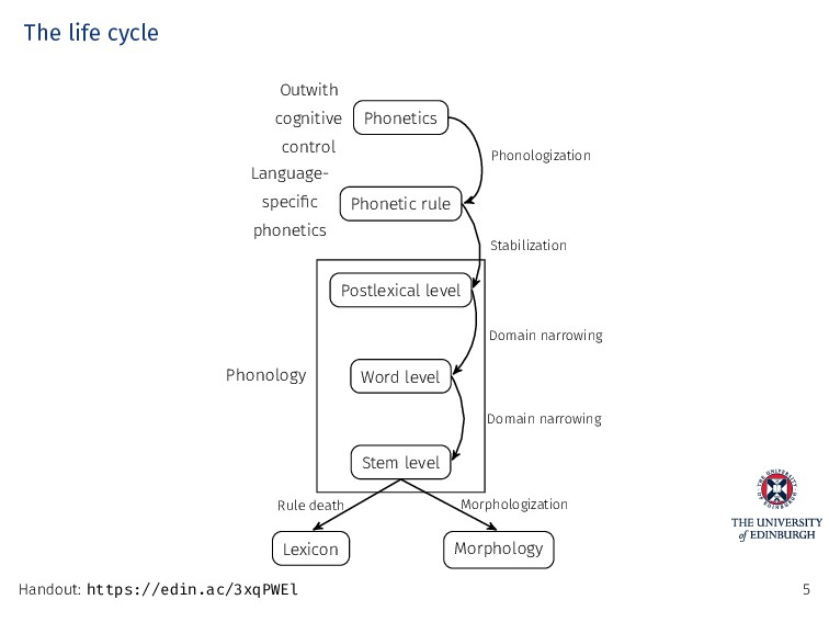 The life cycle Phonetics Outwith cognitive cont...