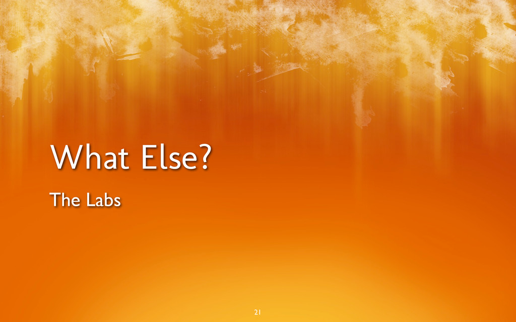 What Else? The Labs 21