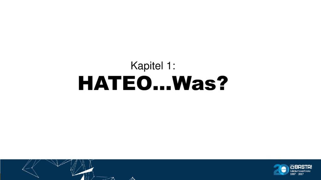 Kapitel 1: HATEO…Was?