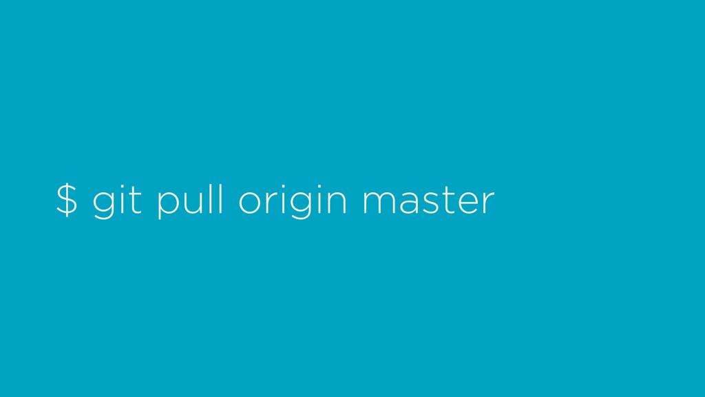 $ git pull origin master