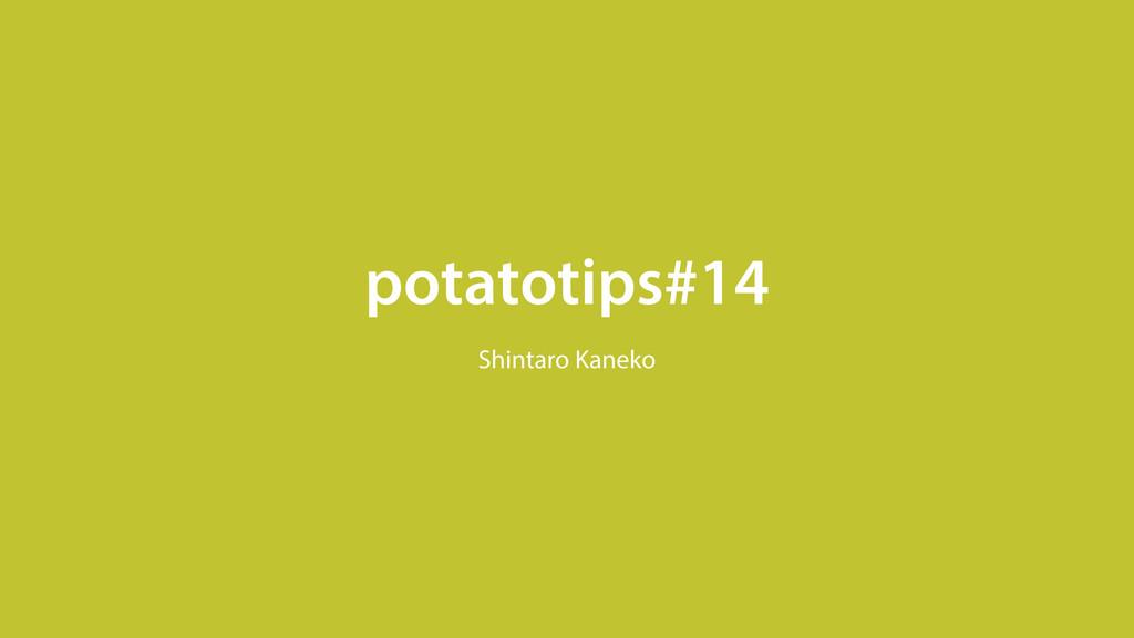 potatotips#14 Shintaro Kaneko