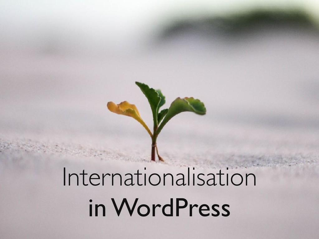 Internationalisation in WordPress