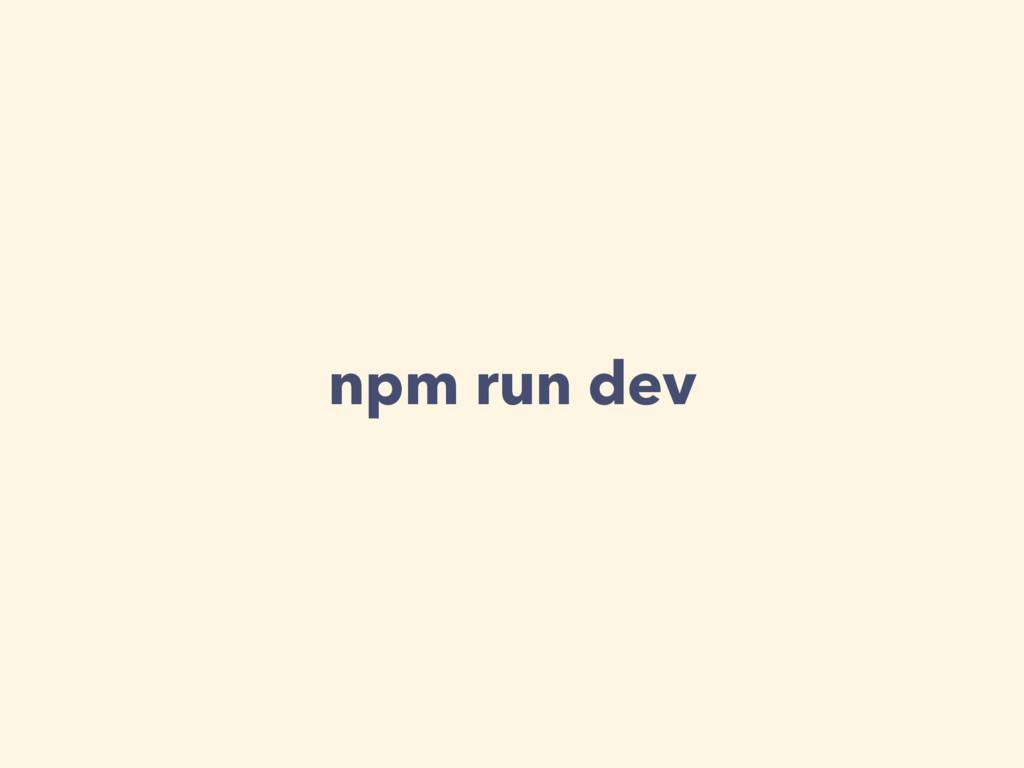 npm run dev