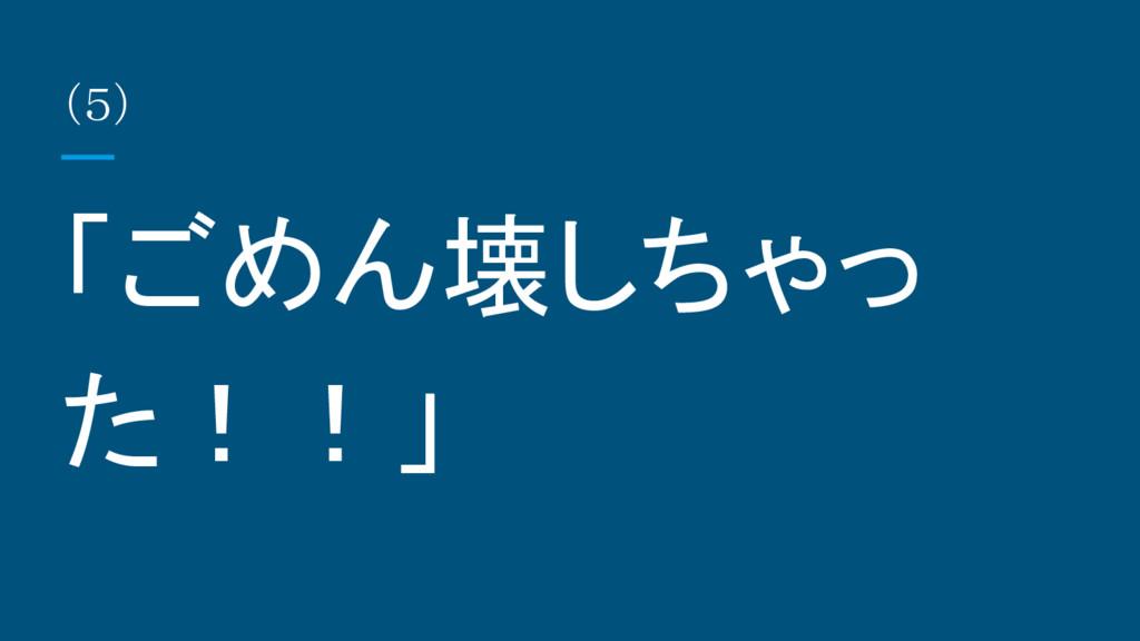 (5) 「ごめん壊しちゃっ た!!」