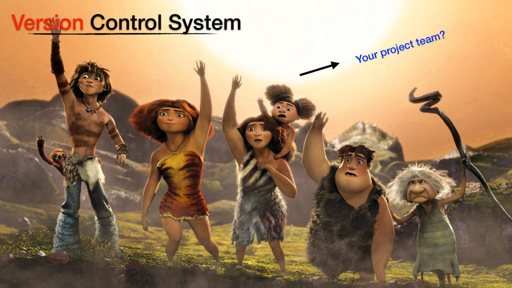 Version Control System Your project team?