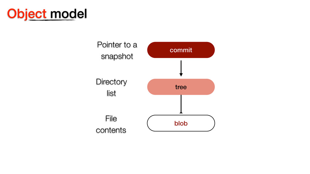 Object model commit blob tree Pointer to a  sn...