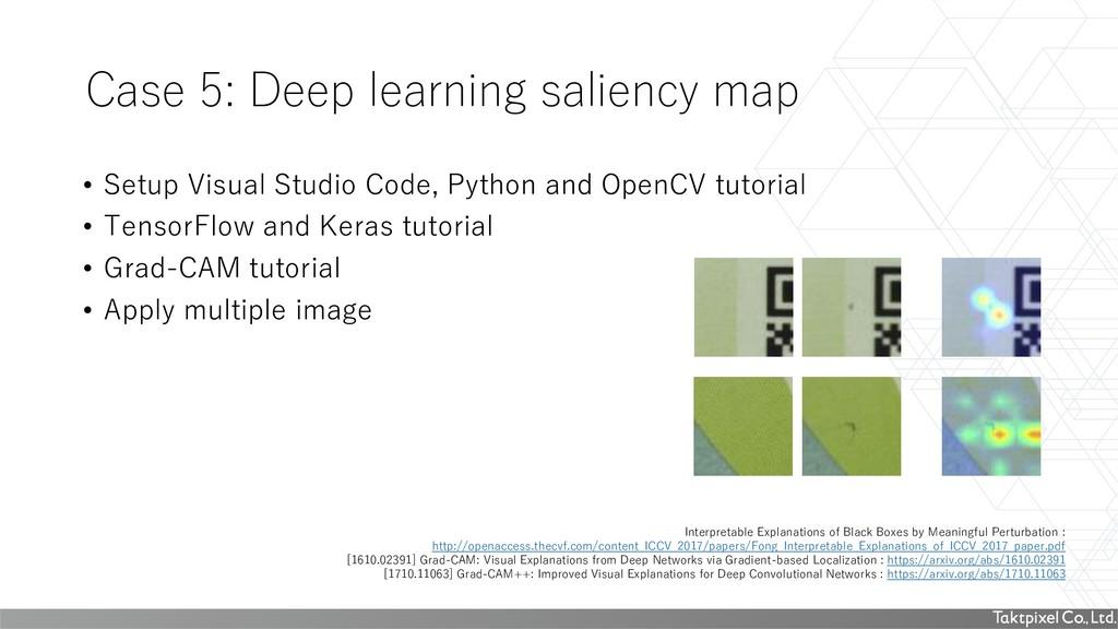 Case 5: Deep learning saliency map • Setup Visu...
