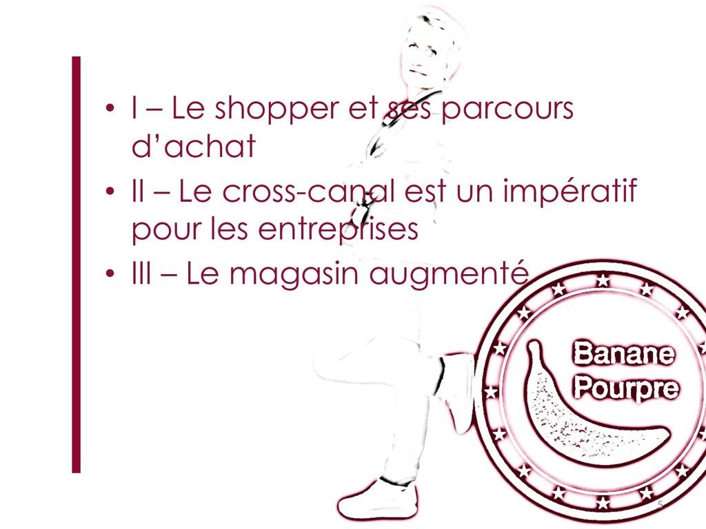 • I – Le shopper et ses parcours d'achat • II –...