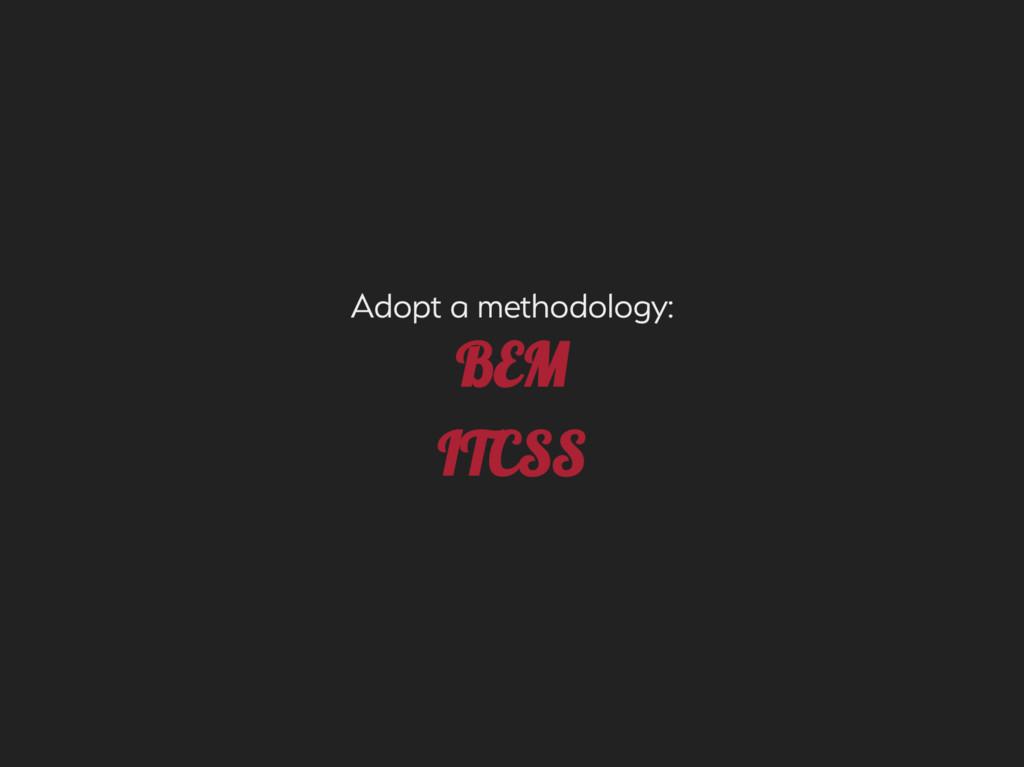 Adopt a methodolog: M ITC