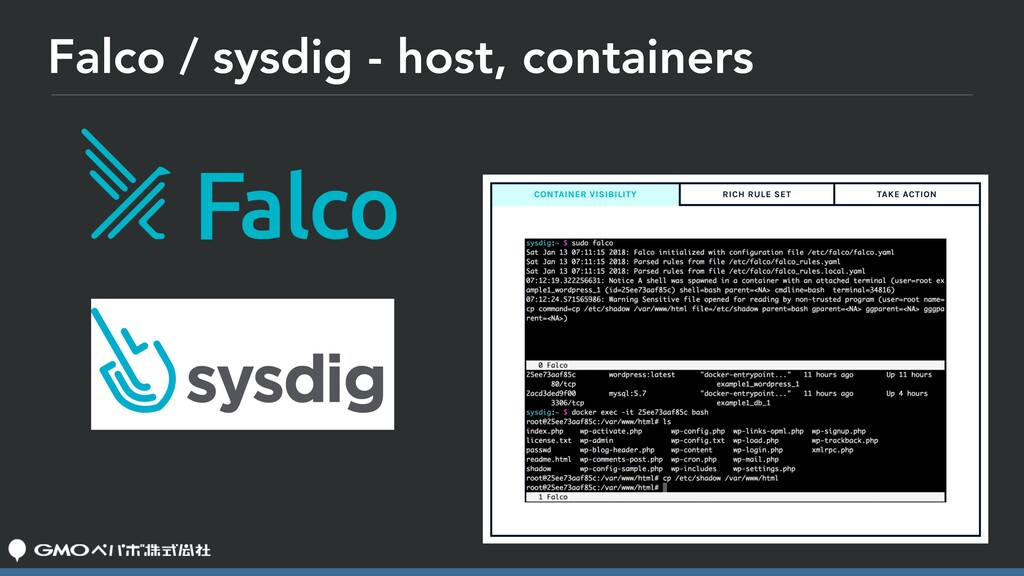 Falco / sysdig - host, containers