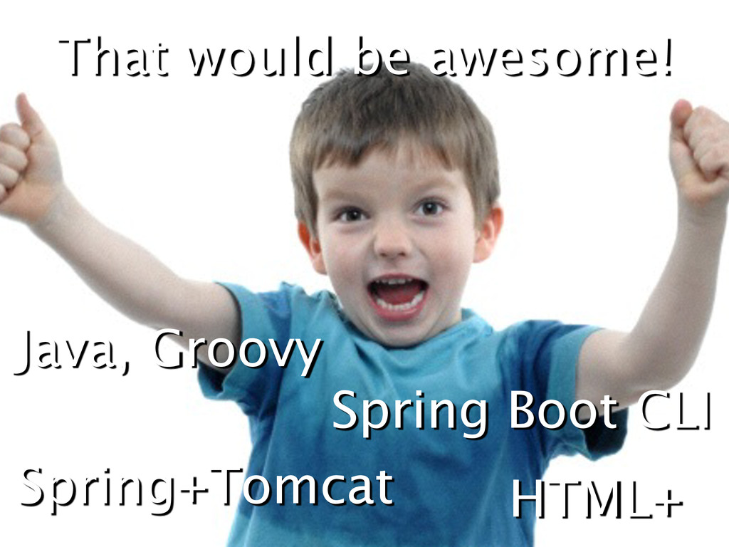 That would be awesome! Java, Groovy HTML+ Sprin...