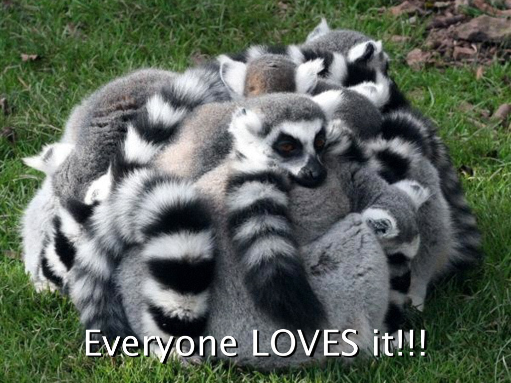 Everyone LOVES it!!!