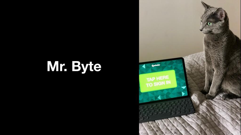Mr. Byte