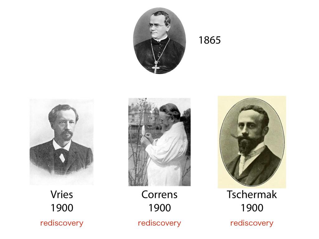 Vries 1900 1865 Correns 1900 Tschermak 1900 ...