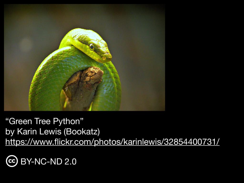 """Green Tree Python""  by Karin Lewis (Bookatz) ..."