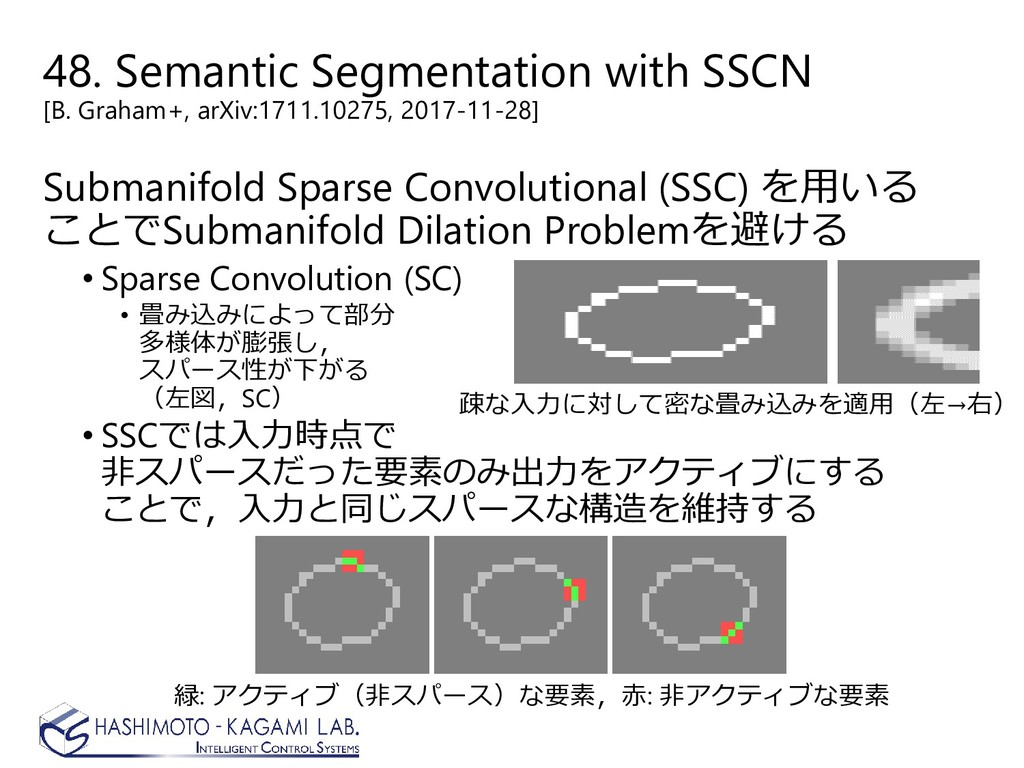 48. Semantic Segmentation with SSCN [B. Graham+...