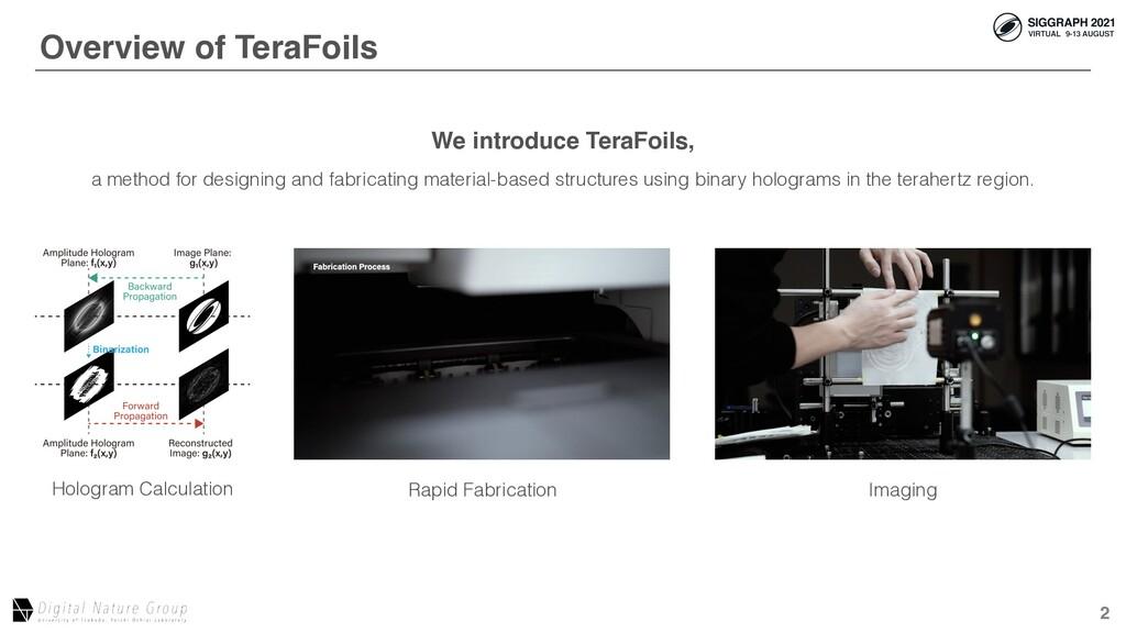 2 Overview of TeraFoils Hologram Calculation Af...