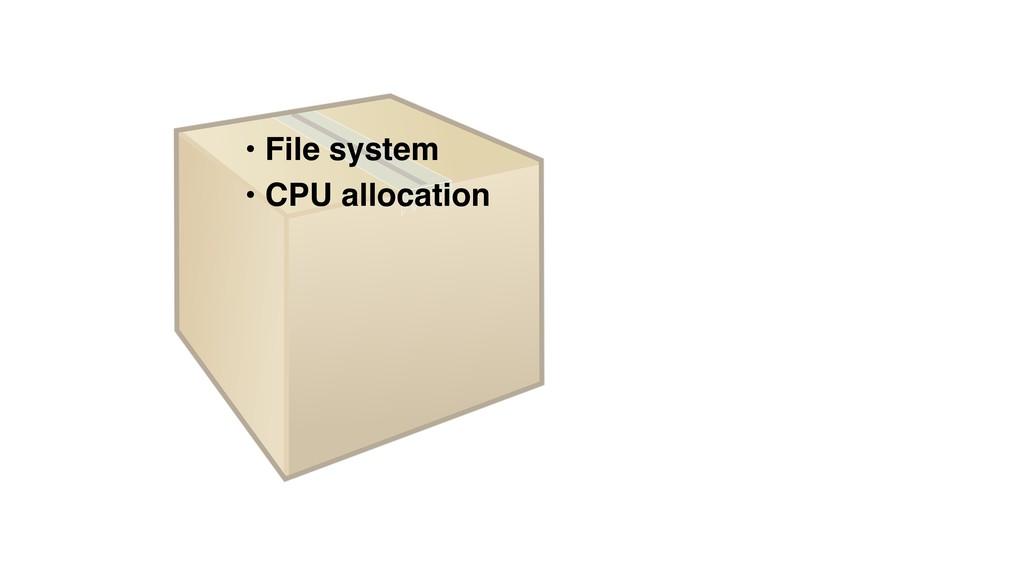 • File system • CPU allocation