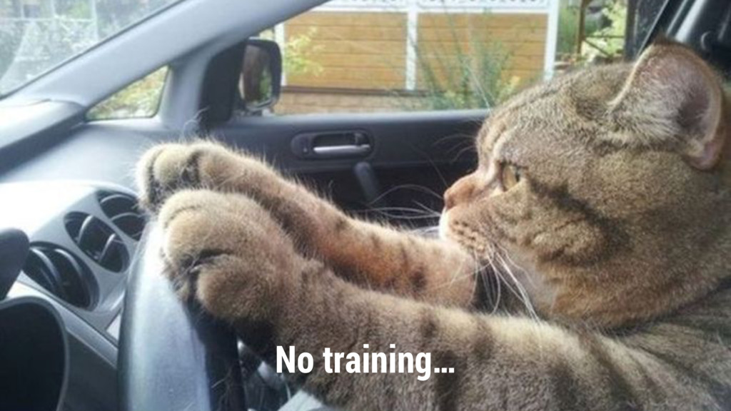 No training…