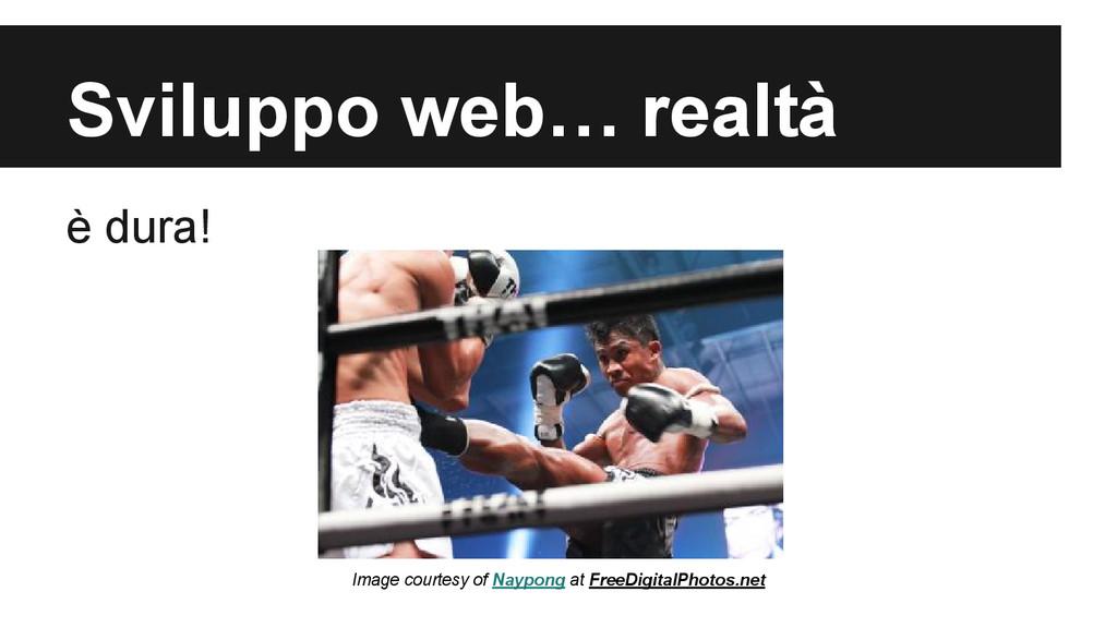 Sviluppo web… realtà è dura! Image courtesy of ...