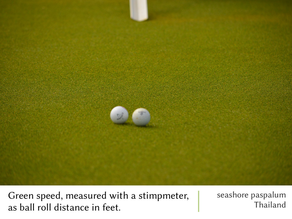 Green speed, measured with a stimpmeter, as bal...