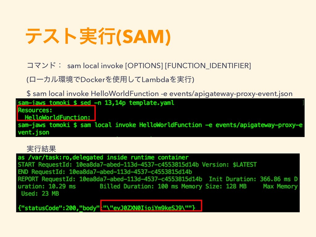 ίϚϯυɿ sam local invoke [OPTIONS] [FUNCTION_IDEN...
