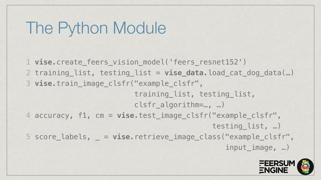 The Python Module 1 vise.create_feers_vision_mo...