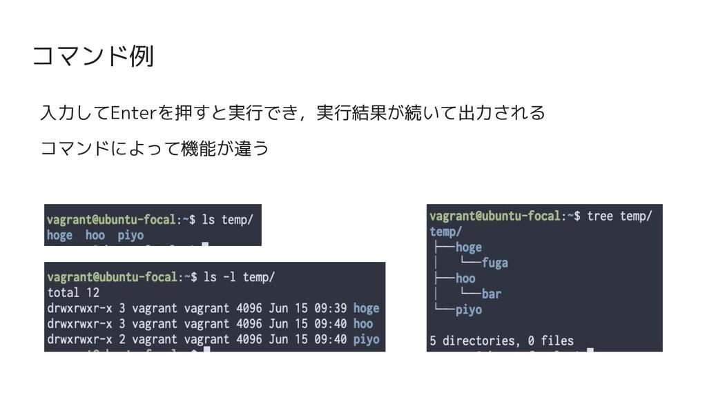 コマンド例 入力してEnterを押すと実行でき,実行結果が続いて出力される コマンドによって機...