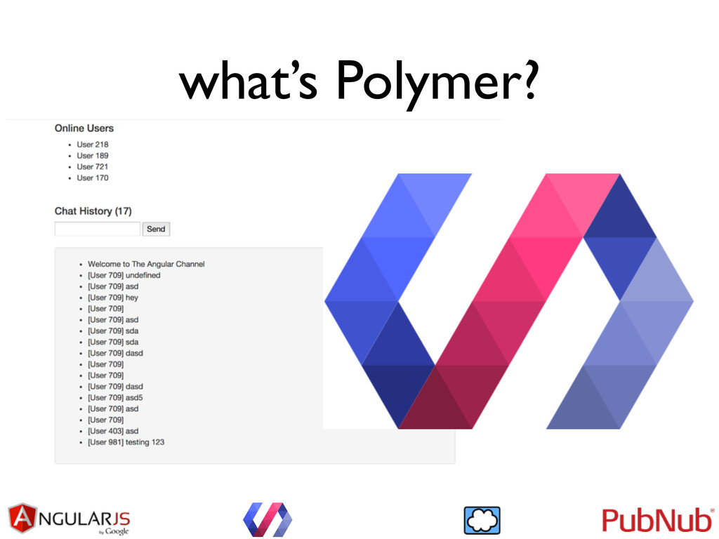 what's Polymer?