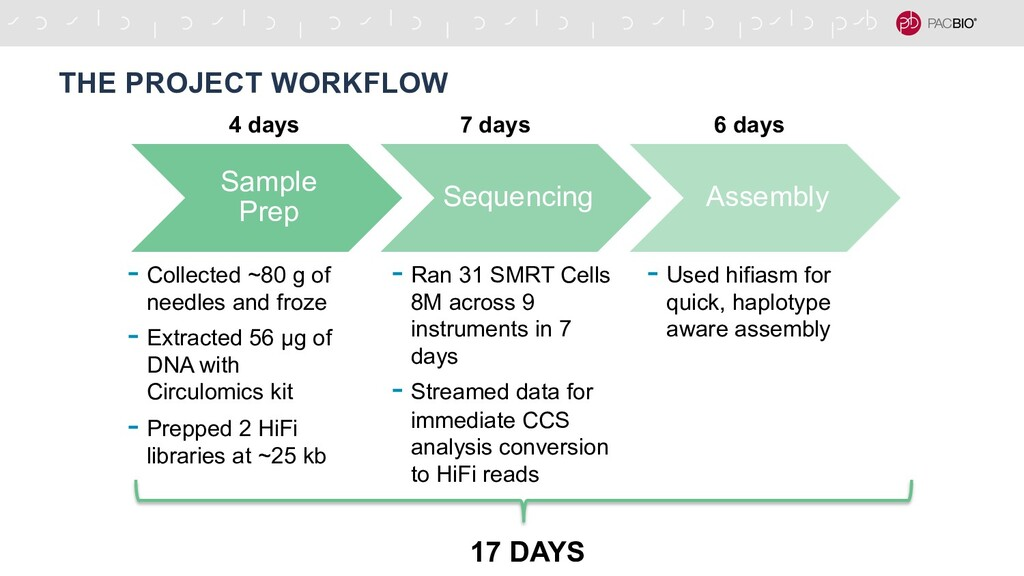 THE PROJECT WORKFLOW Sample Prep Sequencing Ass...