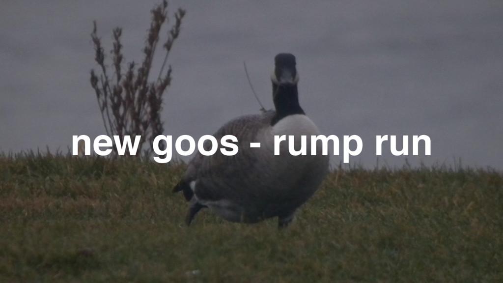 new goos - rump run