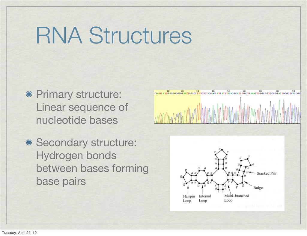 RNA Structures Primary structure: Linear sequen...