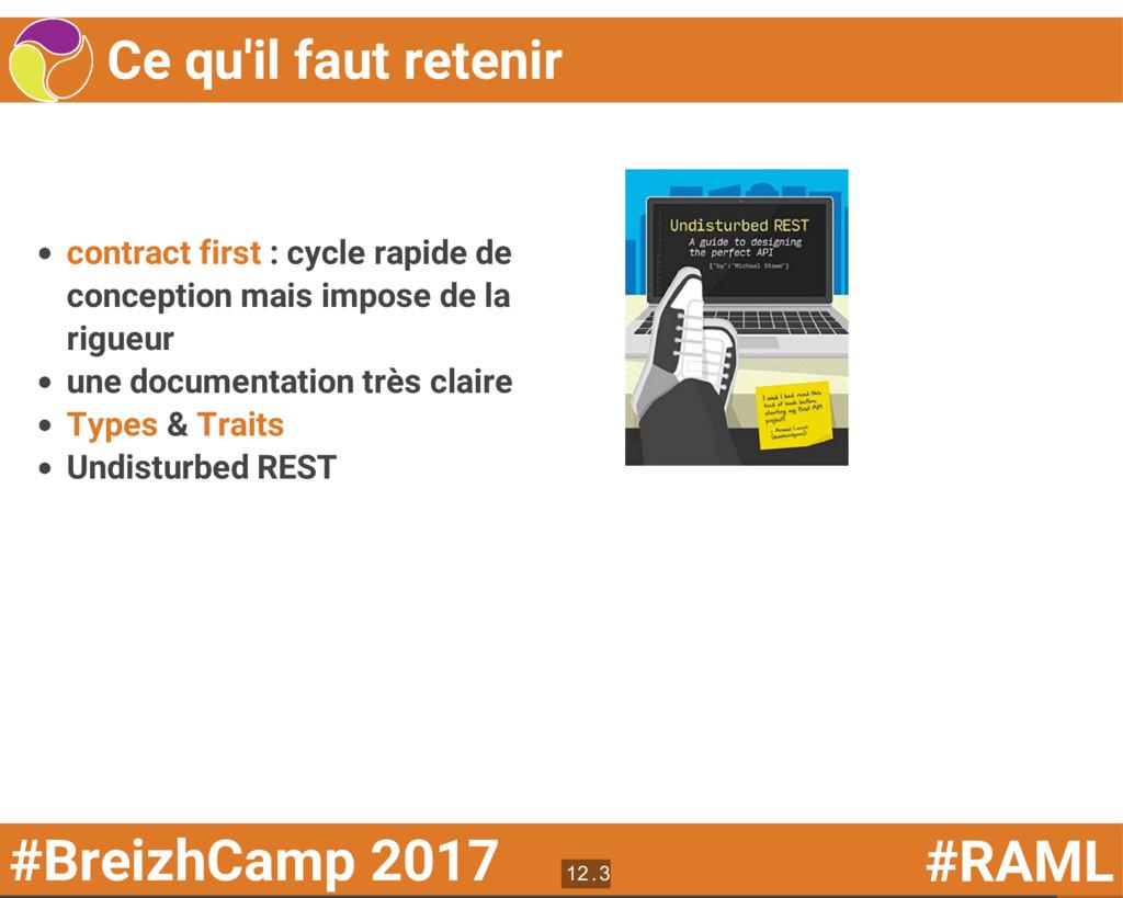 #BreizhCamp 2017 #RAML Ce qu'il faut retenir co...