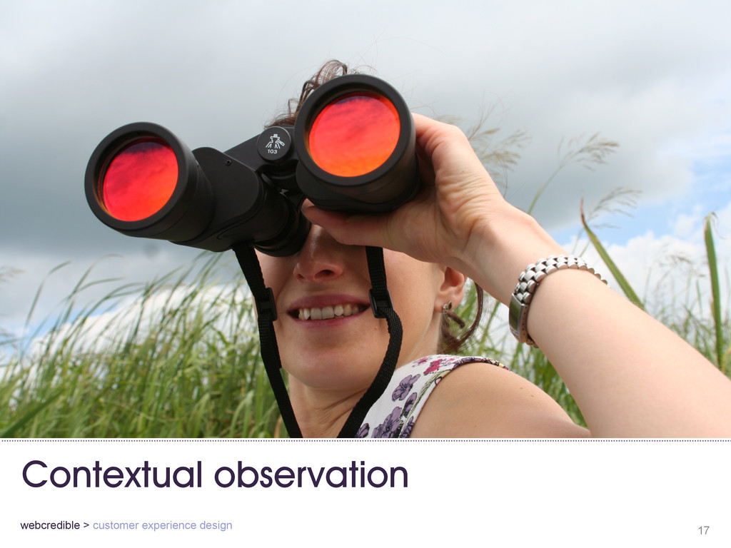 Contextual observation 17 webcredible > custome...