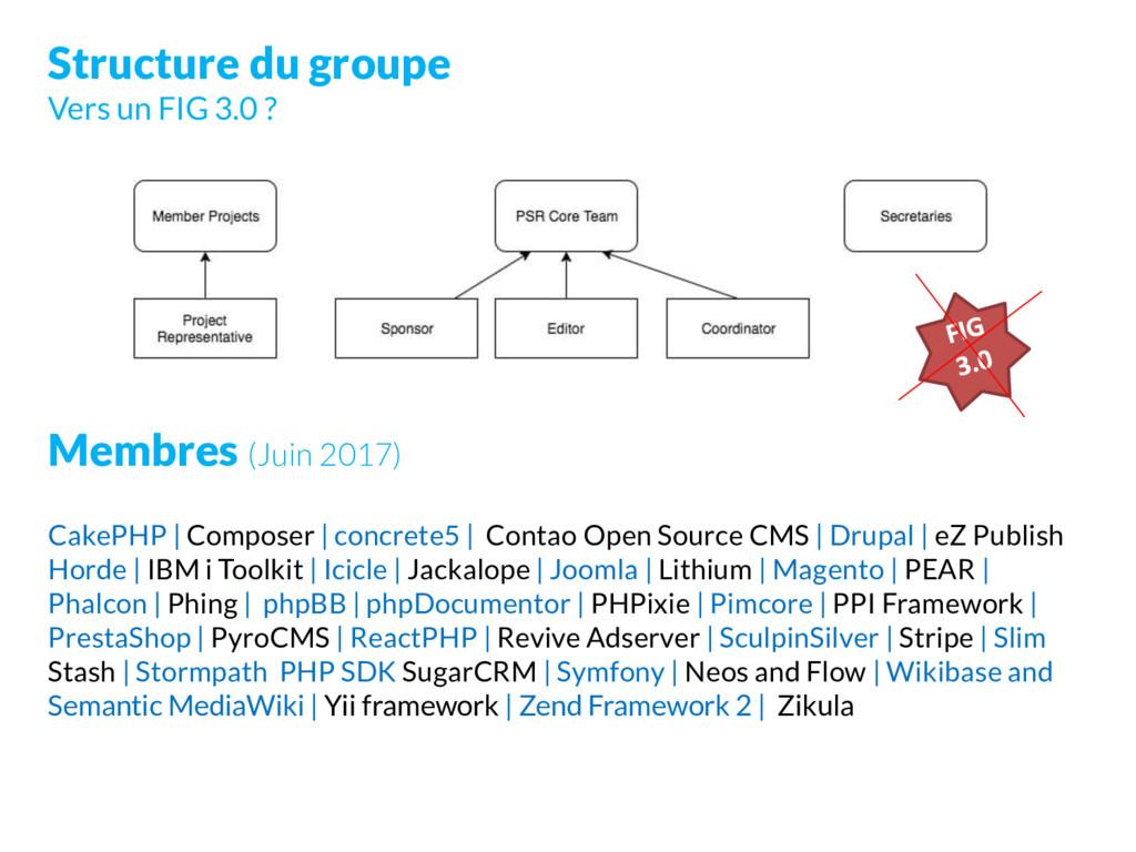 Structure du groupe Vers un FIG 3.0 ? Membres (...