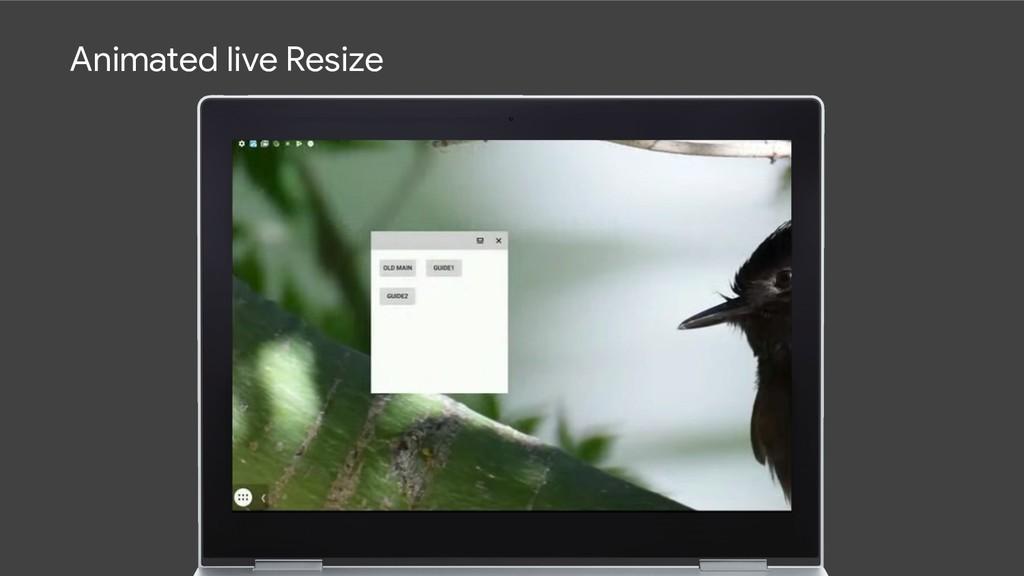 Animated live Resize