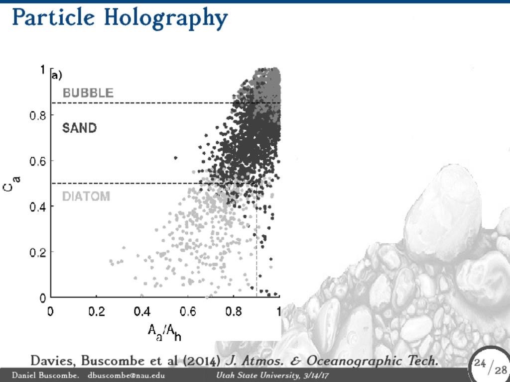 Particle Holography Davies, Buscombe et al (201...