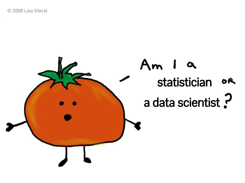 statistician a data scientist © 2009 Lisa Slavid