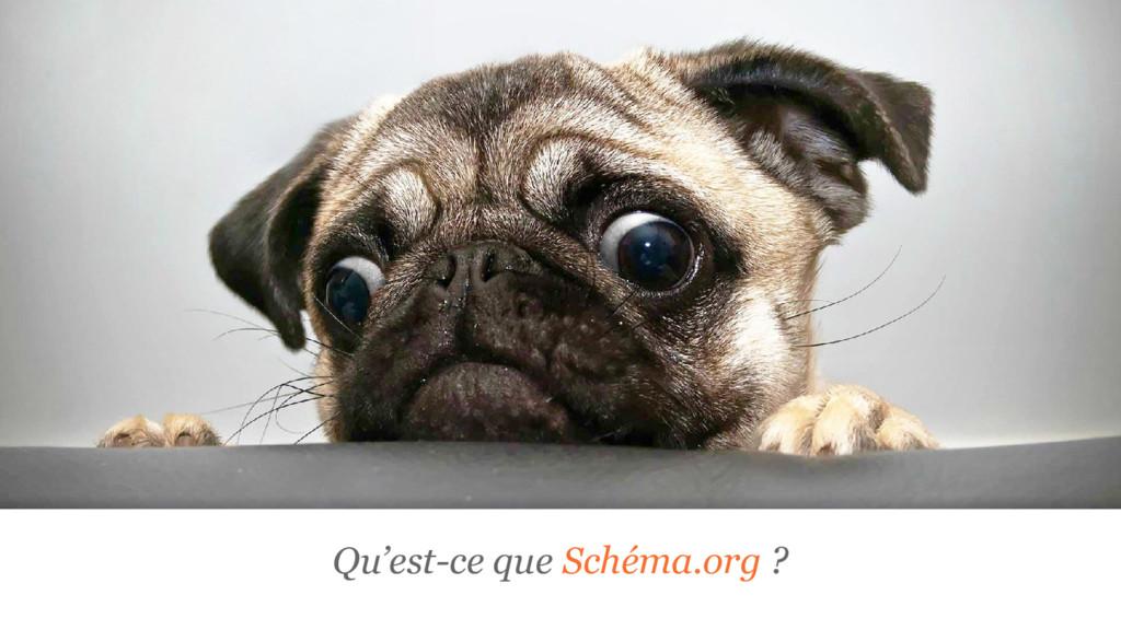 Qu'est-ce que Schéma.org ?